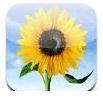Photo app iOS