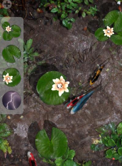 Pocket pond app