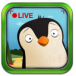 Pocket Zoo icon